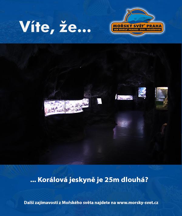 Korálová jeskyně