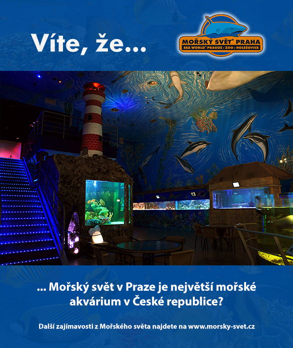 Největší mořské akvárium